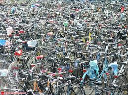 piazza bici